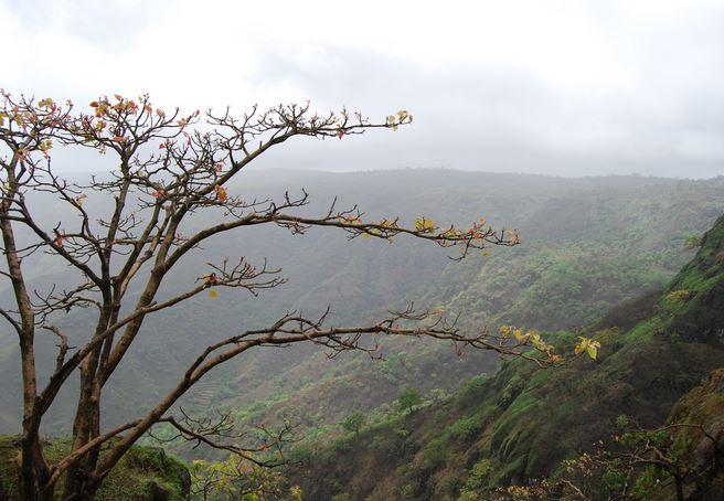 Panchgani Landscape