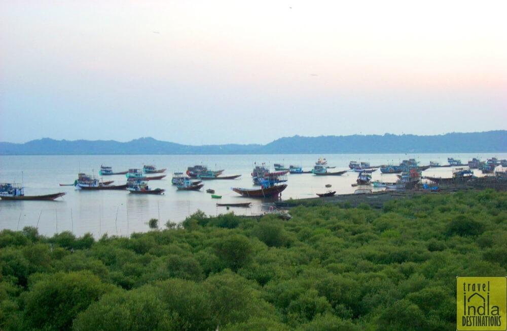 Fishing Boats in Vasai