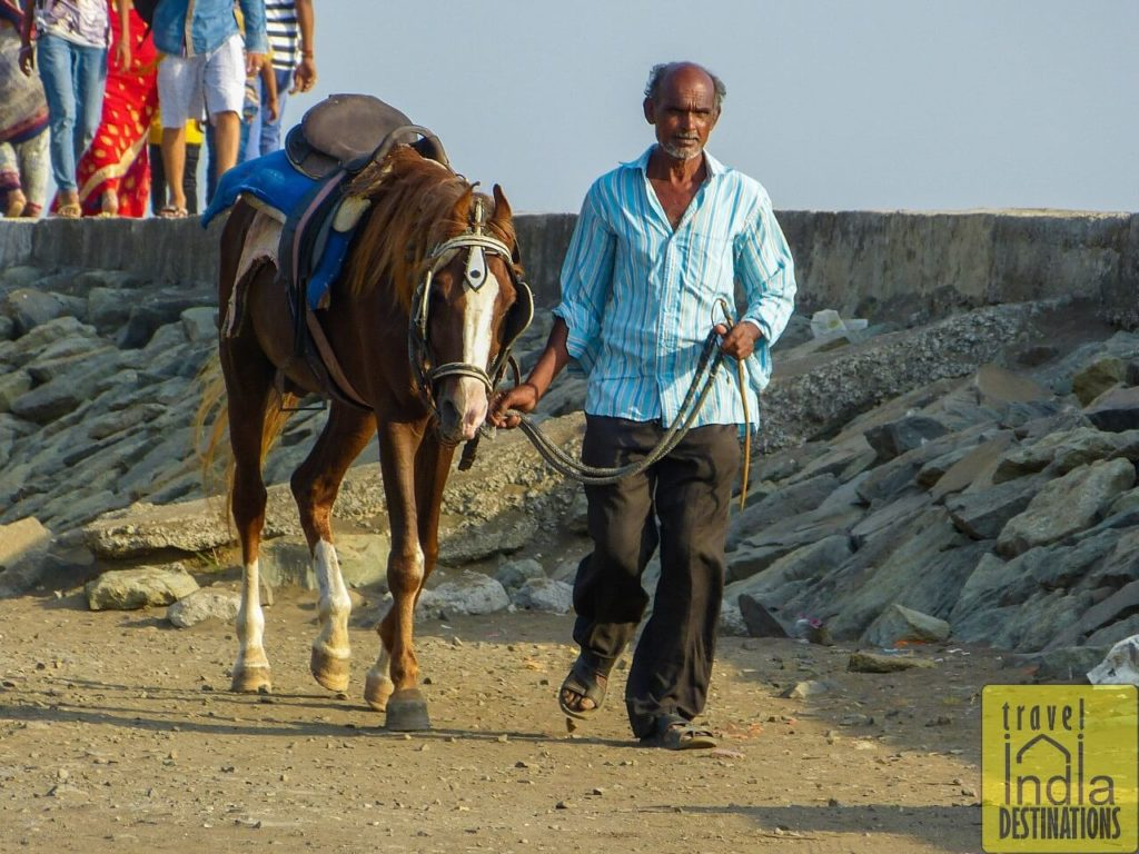Horse Rides at the Suruchi Beach