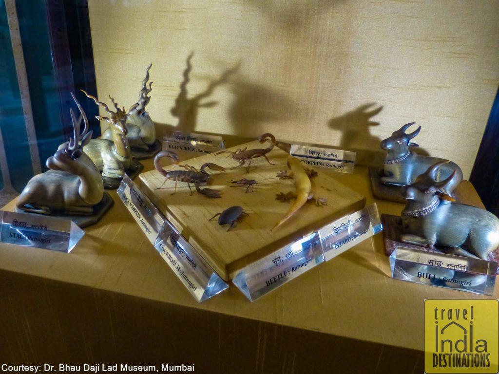 Animal horn at Bhau Daji Lad Museum